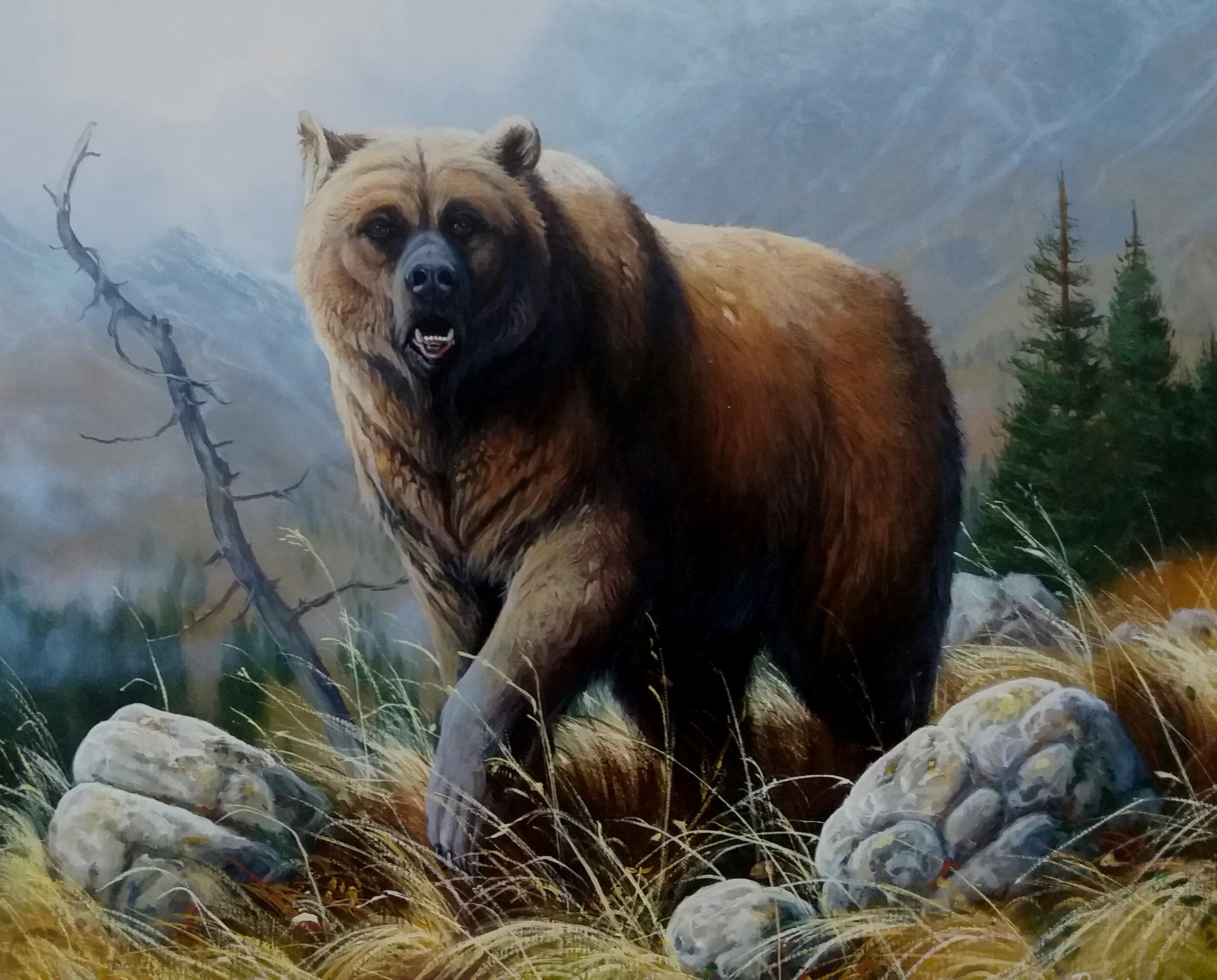 orso bruno roberto bianchi davide celli simbiosi magazine